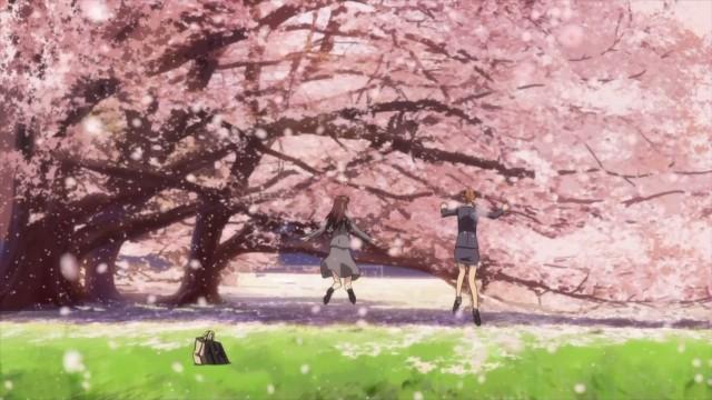 rideback-01-sakura-storm