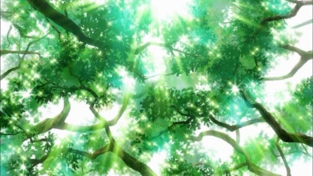 kimi ni todoke 02 sunlight through the trees